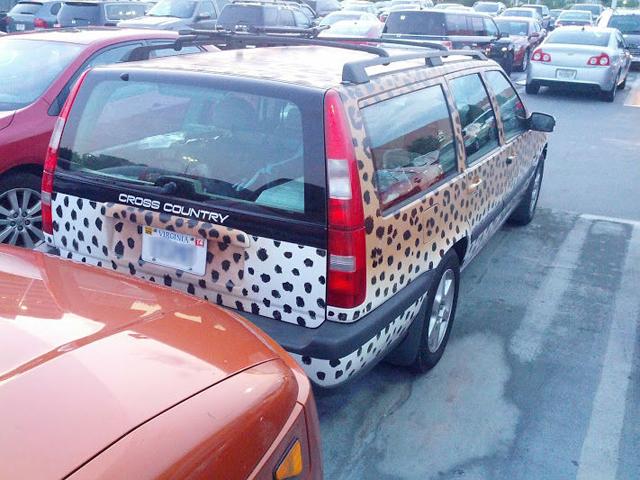 auto-leopard